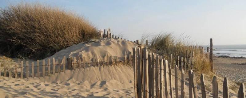 Création d'un site web pour une location saisonnière en Vendée